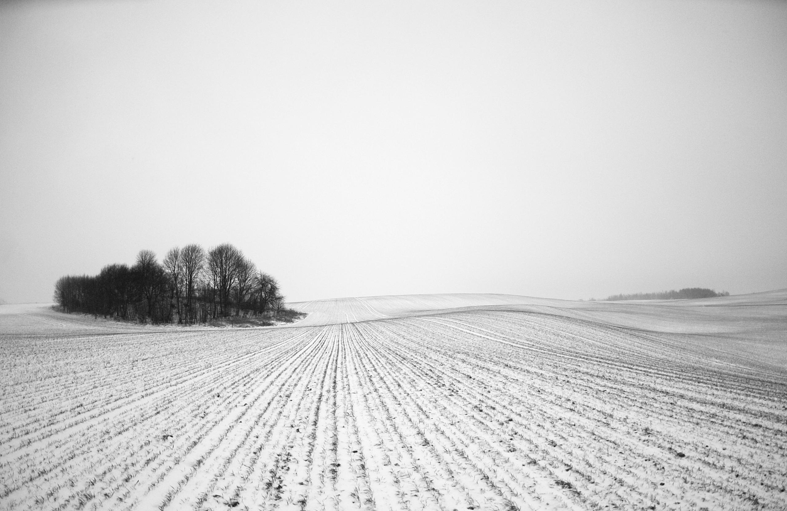 © Sigita Flaksienė 2012